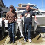 nanaimo salmon
