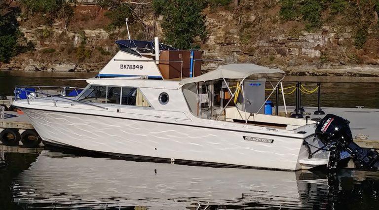 wildlife tour boat