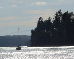 sea tour boat